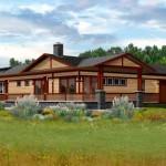 The Hybrid House